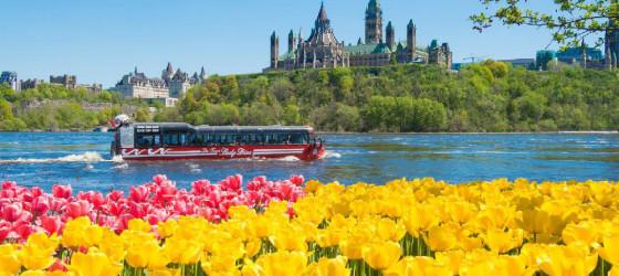 Сезонные и познавательные туры по Канаде
